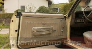 1969 Buick Skylark 17-1100