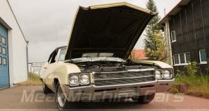 1969 Buick Skylark 17-1250