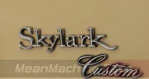 1969 Buick Skylark 17-1520
